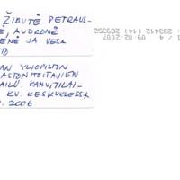 VK253b.jpg