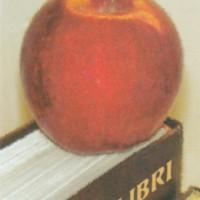 Kirjastokortti - Keski-Pohjanmaan ammattikorkeakoulun kirjasto
